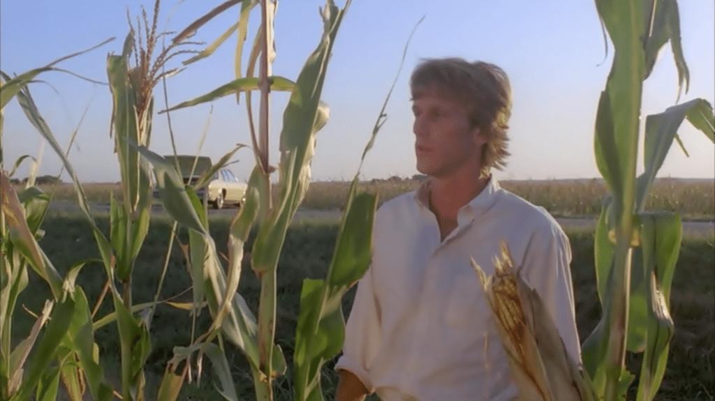 Burt's got a bad feeling about this...cornfield.