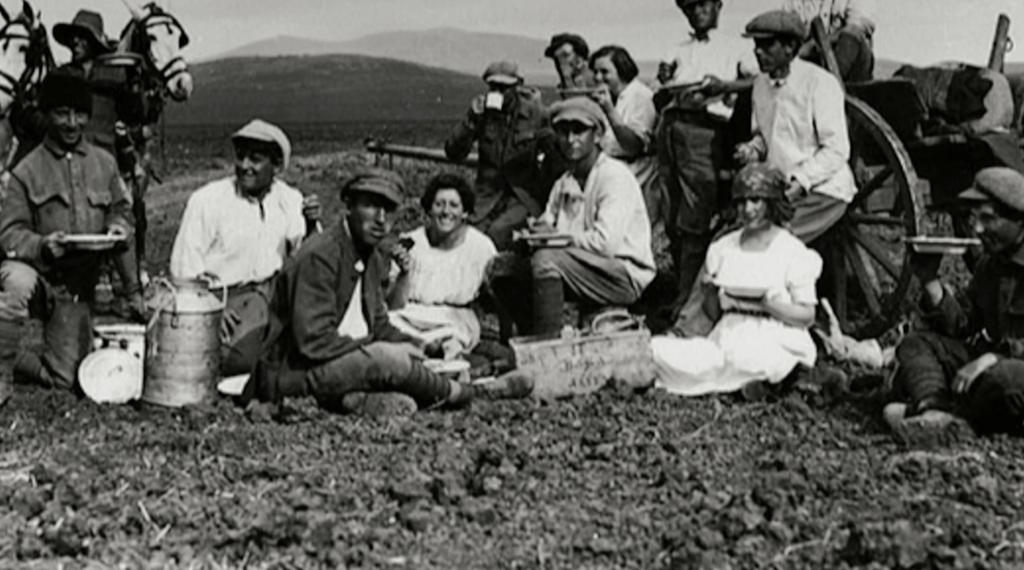 Kibbutznik_Picnic
