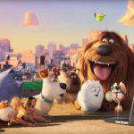 Secret Life of Pets: One Furry Community